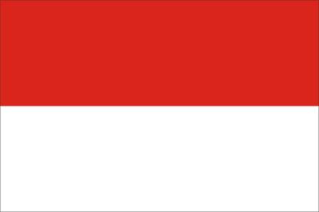 5号国旗矢量图